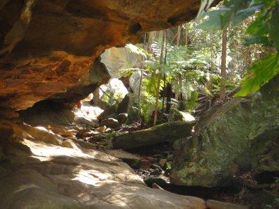 Queensland2012_0788.jpg