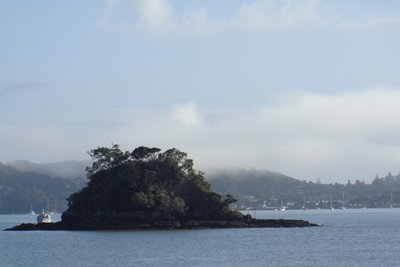 The view from Paihia across to Russell.