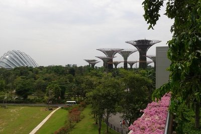 The Supertrees.