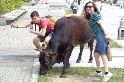 Wildlife at the Po Lin Monastery.