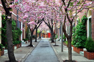 Jessup Street, Philadelphia
