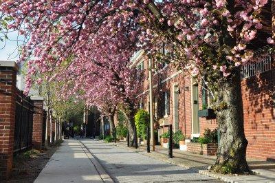 Quince Street, Philadelphia