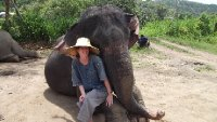 Mahout for a day