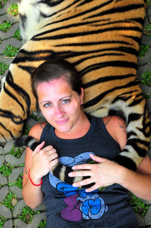 Snuggles With A Tiger - Thailand