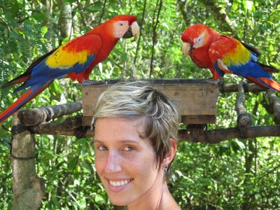 Ana and the Macaws