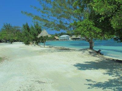 Utila's Beach