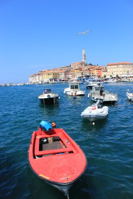 Rovinj and harbour