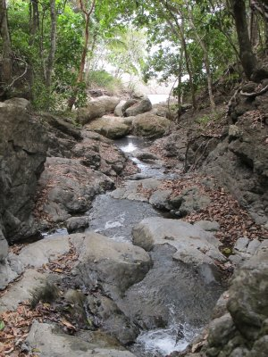 Fresh water springs feed the large waterfalls in Montezuma
