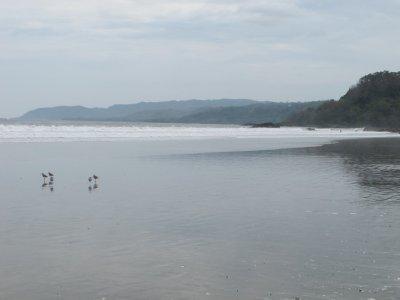 The long endless beaches of Montezuma on a cloudy morning