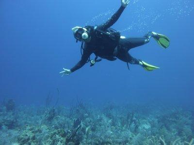 Andrew floating