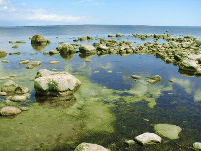 Östersjön - north east Skåne