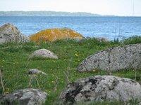 Sea colours - Skåne