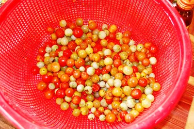 Lao tomatoes