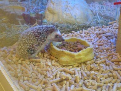 he's eating!!!