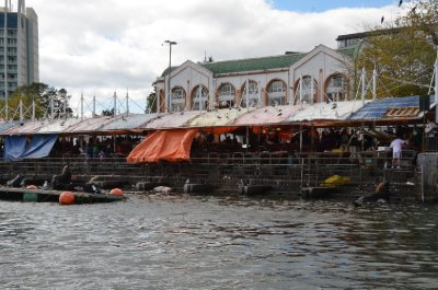 Fish markets