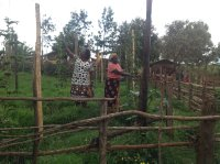 women with passion fruit trees