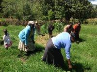 women in the field