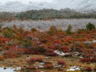 Patagonia 065