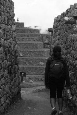 Wandering through Macchu Picchu