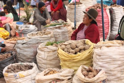 Potatoes for sale!! There are over 400 varieties of potatoes in Peru