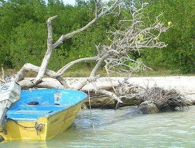 Paicla Key, Morrocoy National Park