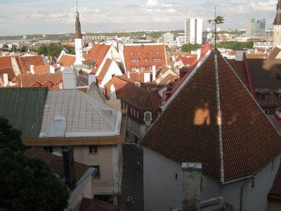Roof of Tallinn