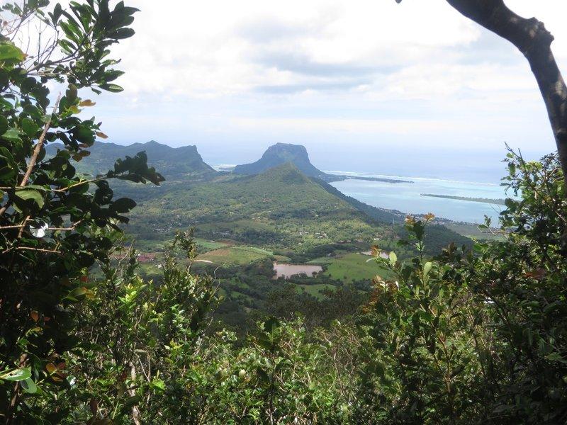 hiking route to the Piton de la petite de riviere noire