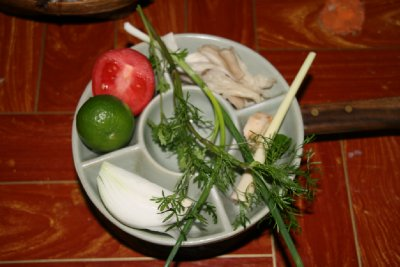 Raw Ingredients for Coconut Chicken Soup