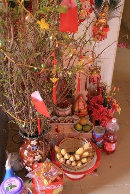 Chinese New Year Tree (Dragon's Mum is Chinese)