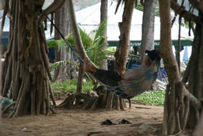 Lazing in a Hammock