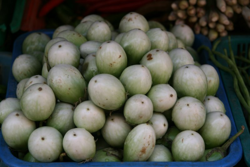 Eggplants, used in Green Curry