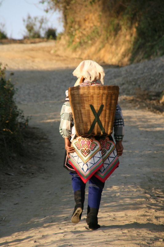 Hani Woman Carrying Basket of Produce