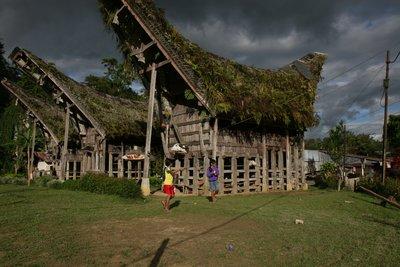 Tana Toraja funeral houses