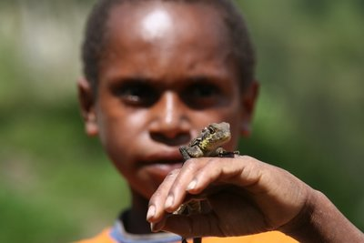 A boy with a lizard