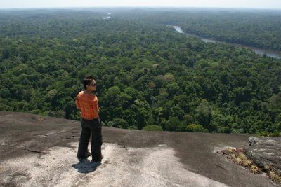 Jungle view from Tebu top