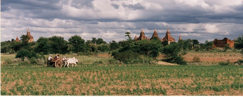 Bagan countryside