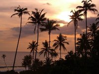 Sunset in Weligama