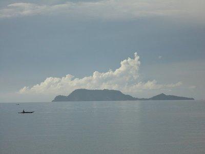 Apo_Island..re__10_.jpg