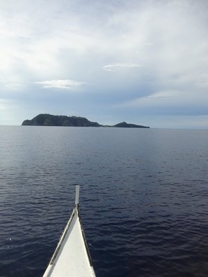 Apo_Island..re__37_.jpg