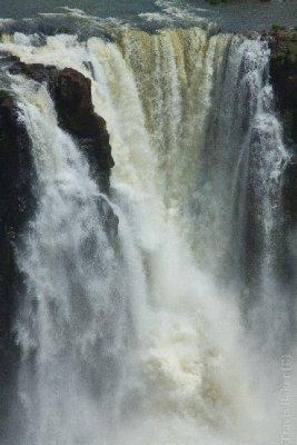 Cataratas do Iguacu (Brazil)-50
