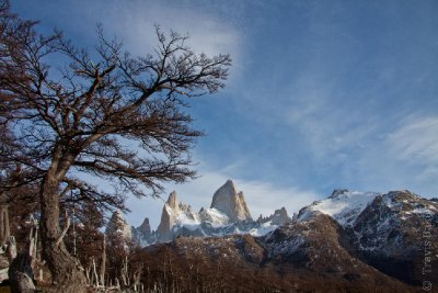 Cerro Fitz Roy
