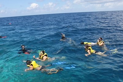 AP Team with Eugene - Reef Exploration at Alila 6
