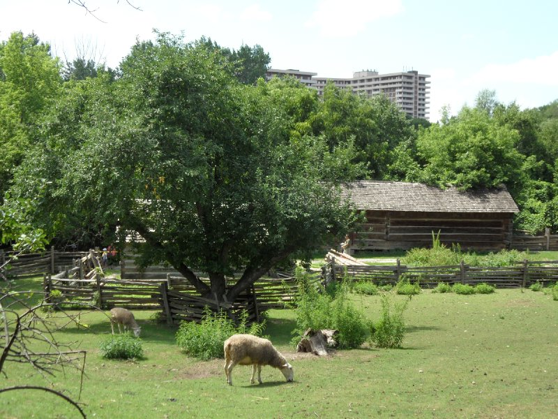 Black Creek Pioneer Village, Toronto, Ontario
