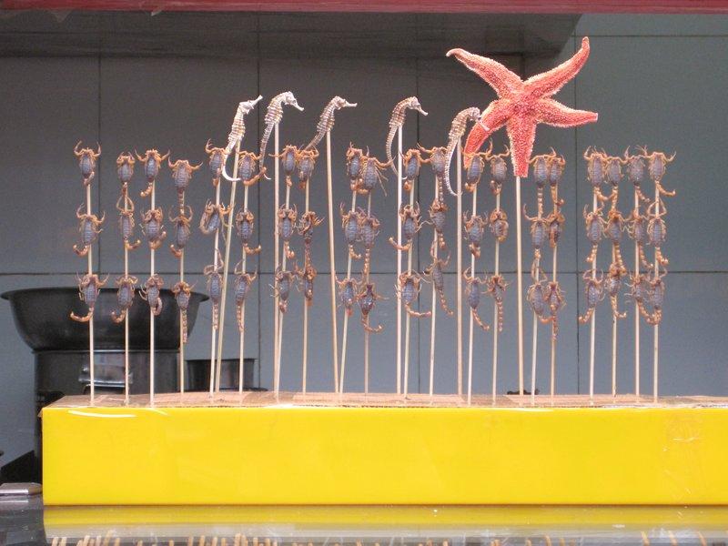 Scorpions on Sticks, Beijing