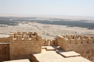 Palmyra - Vista of Oasis and Ruins from the Citadel