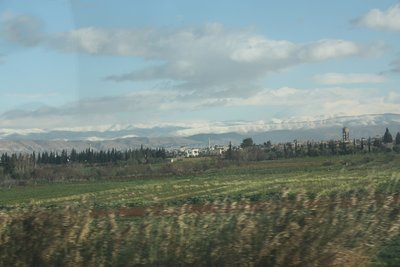 On the Road to Aleppo - Fields and Snowy Mountains