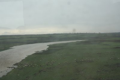 On the Road to Aleppo - Sheep, fields and a river through the dirty window of my bus