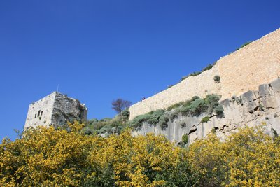 Qala'at Salah ad-Din - Looking at the Castle from the Chapel with Vegetation