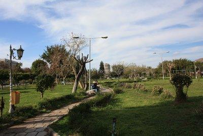 Tartous - Park
