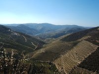The Valley of Douro